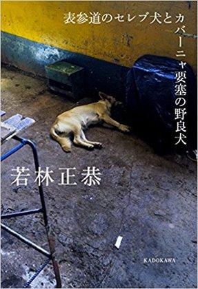 表参道のセレブ犬とカバーニャ要塞の野良犬.jpg