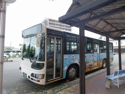 IMGP4556.jpg